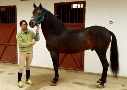 Guajiro, en plena rehabilitación, ya trabaja en el campo