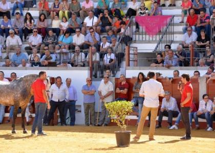 Andrés Romero acercó su cuadra a la afición de Pozoblanco