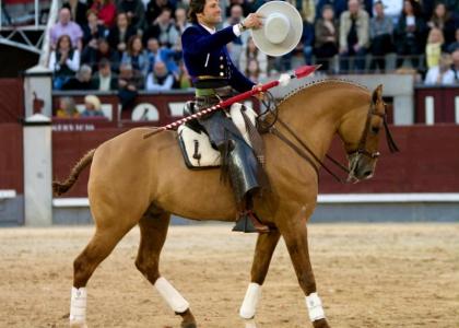 Andrés Romero pierde en Riaza al caballo Hidalgo, de la Yeguada Hermanos Merino
